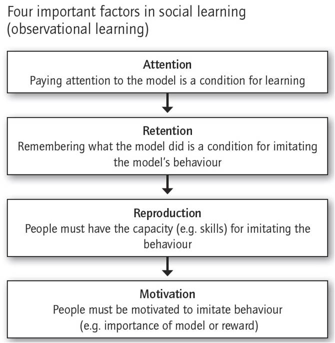 the difference between behavioral learning and social learning theory Faq: behaviorism and social learning theory 2 reinforcement, whether positive or negative, leads to an increase in the frequency of some behavior.