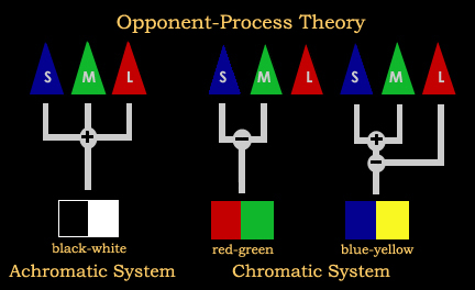 Opponent Process Theory logo